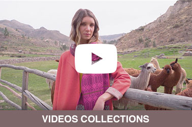 Alpaca Collection Videos